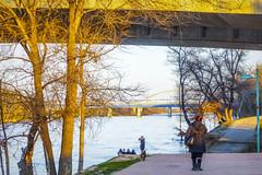 Paseando a orilla del Ebro (Nati Almao1) Tags: riveradelebro252
