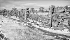 Stainton . (wayman2011) Tags: f2 fujifilmxf18mm lightroomfujifilmxt10 wayman2011 bwlandscapes mono rural gates drystonewalls winter snow pennines dales teesdale stainton countydurham uk