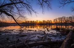 Sonnenuntergang am Altrhein (Jana`s pics) Tags: sunset sonnenuntergang sonne rhein rhine river fluss mood landscape landschaft landscapephotography landschaftsfotografie longtimeexposure lzb
