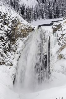 Lower Falls - Grand Canyon -Yellowstone