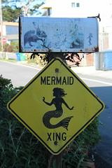 IMG_7590 (mudsharkalex) Tags: california pacificgrove pacificgroveca mermaidavenue mermaidcrossing mermaidxing mermaid sirena sign signs