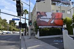 American Apparel Sunset Blvd Billboard Advertising (dashtwoinc) Tags: americanapparel advertising sunsetblvd outdoor marketing aamodels fall winter basics