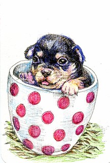 Teacup Chihuahua - Zensations Technical Pen & Sarasa Fineliner on a Hahnemühle Watercolor Postcard