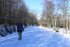 IMG_0244 (rudolf.brinkmoeller) Tags: eifel wandern natur eifelsteig hohesvenn