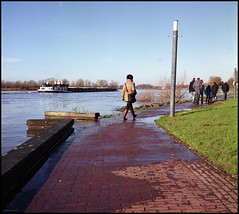Rolleis Winter (07) Beware of Bow Waves (Hans Kerensky) Tags: rolleiflex 35c tlr schneider xenotar fuji pro 160ns plustek opticfilm 120 january 2018 arcen nl river maas high level beware bow waves