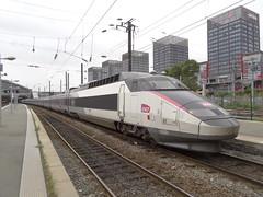 TGV SE n°01  ( PSE - Paris / Sud-est ) (CHABOT Christophe) Tags: frenchrailroadphotography frenchrailwayphotography frenchtrainphotography tgv tgvse tgv01 tgvsudest garedelille garelilleflandres sncf hauptbahnhof bahnof bahnhof traingrandevitesse hautsdefrance highspeedtrain hochgeschwindigkeitszug psen°01 tgvpsen°01 tgvsen°01 fasttrain schnellzug schnellzuch héichschnellzug spoorweg spoorwegfrankrijk railwayfrance eisenbahnfrankreich eisenbahnjernbane frankrigjernbaneferrovia franciaferrocarril carmillon livréecarmillon frenchtrainhighspeed train trainhighspeed frenchtrainhighspeedn°01 trainhighspeedn°01