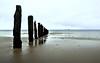 Beach, posts, and horizon; minimalist (Gael Varoquaux) Tags: beach sand sea sky abstract minimalist landscape geometric posts horizon