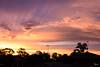 Sunset (tonyg1494) Tags: sydney australia silhouette sunset sky photography