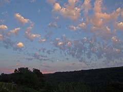 Altocumulus castellanus, post-sunset, Teign Gorge (Philip_Goddard) Tags: weather meteorology clouds cloudformations mediumclouds altocumulus altocumuluscastellanus europe unitedkingdom britain british britishisles greatbritain uk england southwestengland devon dartmoornationalpark drewsteignton teignvalley teigngorge hunterspath