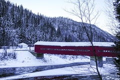 Covered Bridge (Danny VB) Tags: pont routhierville gaspesie quebec canada matapedia valley vallé hiver winter red snow trees sapins ice cold froid sony rx100 dannyboy