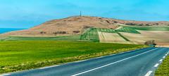 Sur la route du Cap. (musette thierry) Tags: vert route cap capblancnez france leshautsdefrance europe musette thierry février february paysage lansc landscape scenery nikon reflex d800 28300mm