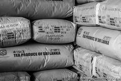 Bags of Sri Lankan Tea in Glenloch Tea Factory,Sri Lanka (AnthonyGurr) Tags: srilanka asia travelphotography anthonygurr bag tea glenloch factory greyscale blackandwhite
