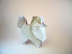 Pomeranian - Katsuta Kyohei (Rui.Roda) Tags: origami papiroflexia papierfalten dog chien perro cão cachorro pomeranian katsuta kyohei
