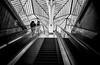 Oriente Station (Howard Yang Photography) Tags: lisbon lisboa oriente trainstation portugal leicam 24mmelmar bw
