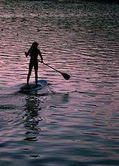 end of day (Karol Franks) Tags: danapoint socal ocean paddleboard december california ride serene sunset pink seashore harbor