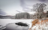 Snow Day (Dan NYNJ) Tags: harrimanstatepark hudsonvalley newyork landscape winter nature upstatenewyork ice woods longexposure nikon snow