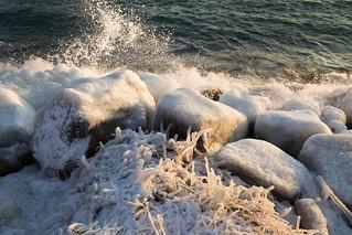 A Cold Shore