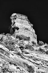 Phoenix_RedRocksCanyon-3 (Lo8i) Tags: arizona phoenix sedona blackandwhite redrocks flickrlounge faycanyon