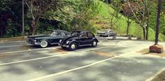 Parking Lot 1 (gpholtz) Tags: diorama miniatures 118 diecast 1961 imperial vw beetle 1950