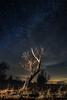 En el aire por la noche. / In the air at night. (Recesvintus) Tags: árbol tree night nocturna nightphotography nocturne stars starry estrellas estrellado cielo sky blue azul outdoor exterior airelibre countryside campo landscape paisaje longexposure largaexposición recesvintus wbpa tokina1116