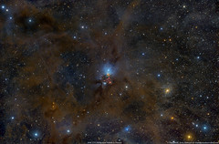 Fire works and Star Dust in Perseus (Terry Hancock www.downunderobservatory.com) Tags: paulswift moonrockastro qhy qhy367c space sky astronomy astrophotography astroimaging