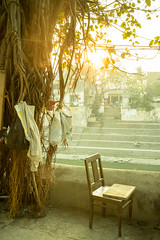 India Feb 2018 - WorliDSC00310 (Espa Da) Tags: bombay india indien indienfeb2018 mumbai banganga tank stuhl chair tree sun