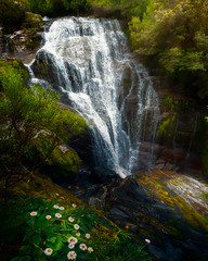 New Zealand Waterfall (AirHaake) Tags: milfordtrack newzealand trip water waterfalls waterfall waterfallhike milford milfordsound flowers summer fresh