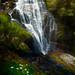 New Zealand Waterfall