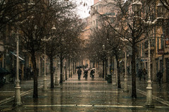 Winter's March (AzurTones_Photography) Tags: winter snow fall umbrella march city street toulon var paca france perspective amazing cool frost flat people walk tree