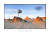 Desert Mounds (sugarbellaleah) Tags: desert tree dry drought arid outback australia