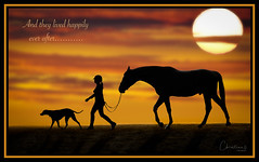 Day 19 of 365 (Christina Draper) Tags: horse dog sillhuette sunset clouds story