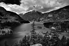 A Day After the Rains, A Beautiful Day (Black & White, North Cascades National Park Service Complex) (thor_mark ) Tags: anseladamslookfromcapturenx2 azimuth286 blueskies bluesskieswithclouds canvas capturenx2edited cascaderange centralnorthcascades cloudsaroundmountainpeaks cloudsaroundmountains colorefexpro davispeak day8 diablolake diablolakeoverlook diablolakevistapoint eldoradomassif evergreentrees evergreens hillsideoftrees lake landscape lookingwest mountainpeak mountains mountainsindistance mountainsoffindistance mountainside nature nikond800e northcascades northcascadeshighway northcascadesnationalparkcomplex northcascadesnationalparkservicecomplex northcascadesscenichighway outside pacificranges partlycloudy picketrange portfolio project365 ridge ridges rollinghillsides rosslakenationalrecreationarea skagitrange snowonfaroffmountainpeaks snowcapped sourdoughmountain sunny talltrees thunderknob transmissionline transmissionlinetowers transmissionlines transmissiontowers trees triptonorthcascadesandwashington wastateroute20 rosslakenationalrecreationar washington unitedstates