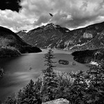 A Day After the Rains, A Beautiful Day (Black & White, North Cascades National Park Service Complex) thumbnail