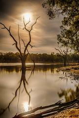 Lake Eppalock, moonlight (Matt OZW) Tags: lakeeppalock night moon landscape eclipse moonlight
