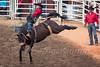 Calgary Stampede 2016 (tallhuskymike) Tags: calgarystampede rodeo calgary cowboy alberta action event outdoors prorodeo horse 2016