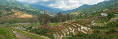 _J5K8232-34.0513.Bản Dền.Thanh Kim.Sapa.Lào Cai (hoanglongphoto) Tags: asia asian vietnam northvietnam northwestvietnam landscape scenery vietnamlandscape vietnamscenery vietnamscene sapalandscape panorama terraces terracedfields sky clouds valley hillside house homes flanksmountain mountainouslandscape trees canon canoneos1dsmarkiii tâybắc làocai sapa bảndền thanhkim phongcảnh phongcảnhsapa phongcảnhtâybắc bầutrời mây ruộngbậcthang sườnnúi sườnđồi thunglũng ngôinhà hàngcây canonef35mmf12lusm