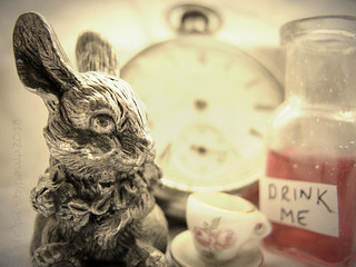 """Curiouser and curiouser!""  ― Lewis Carroll, Alice in Wonderland"