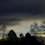 Morgenlicht 010 thumbnail