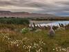 La magia della Patagonia (Luna y Valencia) Tags: patagonia riserva ecologica laguna nimez argentina santacruz elcalafate