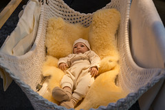 Babyhängematte - Boot Düsseldorf 2018 (marcoverch) Tags: 2018 germany messe düsseldorf boot baby child kind blanket decke newborn neugeborenes people menschen one ein family familie innocence unschuld indoors drinnen two zwei little wenig wear tragen bed bett furniture möbel noperson keineperson son seine offspring nachwuchs love liebe tiny sehrklein woman frau macromondays national boats pretty photoshop golden january aircraft eos babyhängematte bootdüsseldorf2018