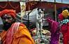 Blessings (soumyamukherjee) Tags: gangasagar sankranti india pilgrim kolkata travel street