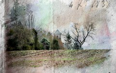 Le clocher des Alleuds. (*Jost49* (Off)) Tags: france paysdelaloire anjou lesalleuds campagne country église church clocher belltower steeple arbre tree texture vintage canoneos6dmkii canonef70200f28lis