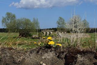 Die legendären Bunker in den Peenewiesen...