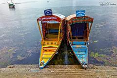 Srinagar Series ... (Bijanfotografy) Tags: ricohgr ricoh compactcamera apsc india kashmir jammukashmir jk srinagar dallake lake waterways boats