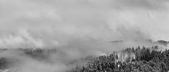 Mystère hivernal (RémyBochu) Tags: montagne neige foret paysage brume brouillard hiver france franchecomté