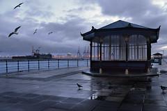 New Brighton dawn (PentlandPirate of the North) Tags: newbrighton wirral promenade fortperch liverpooldocks dawn evilseagulls