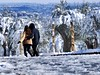 Buon giorno Roma (ioriogiovanni10) Tags: fidanzati amore passione coppia ❄️ buongiorno febbraio capitale city neve snow rome leica lumix