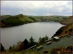 Photo of IMG_1836  Llyn Clywedog reservoir Wales 060512