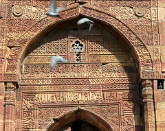 qutub minar pigeons (kexi) Tags: delhi india asia qutubminar red sandstone texture birds flying pigeons old ancient monument history canon february 2017 arch orange stone wall instantfave
