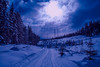 Blue-tiful wonderland (evakongshavn) Tags: bluetiful blue snow hivernal hiver winter winterwonderland winterwald winterlandscape wonderlandscape wonderland earthnaturelife beautifulearth heavenonearth earthswonder earthy serenity serene tranquilhaven tranquil tranquility sky clouds sun letthesunshinein sunshine outside outdoors outdoorphotography onmywalk walkingthedog walking walk wald forest foret havingfun enjoyingthemoment carpediem whippedcream virginsnow landscapephotography landscape landschaft paysage natur nature naturerocks naturelovers mothernaturerocks mothernature blahblahscape